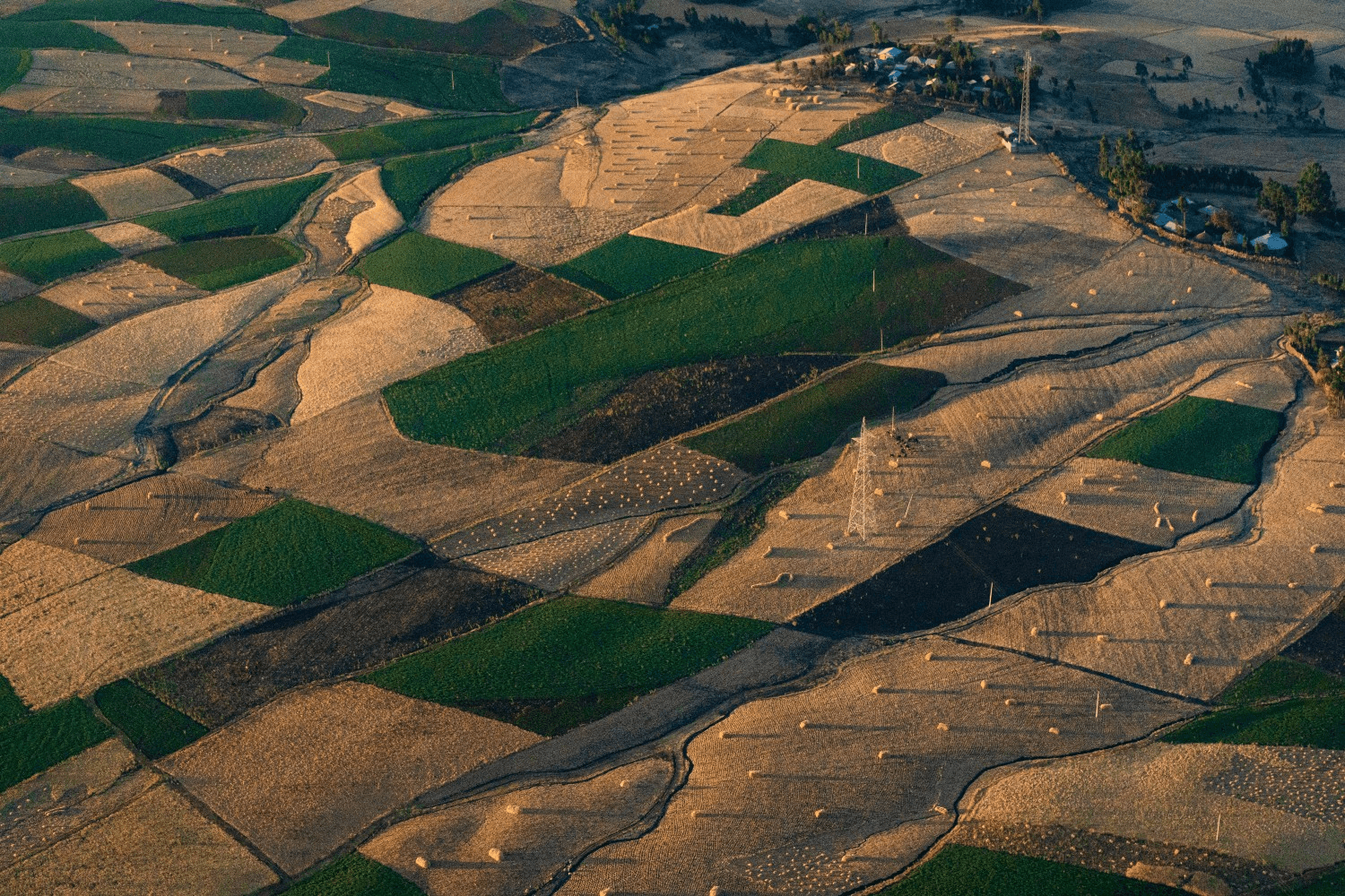 Aerial view of fields, Ethiopia
